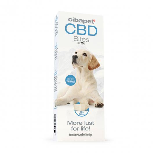 CBD Dog Treats