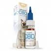 CBD Oil 4% For Cats